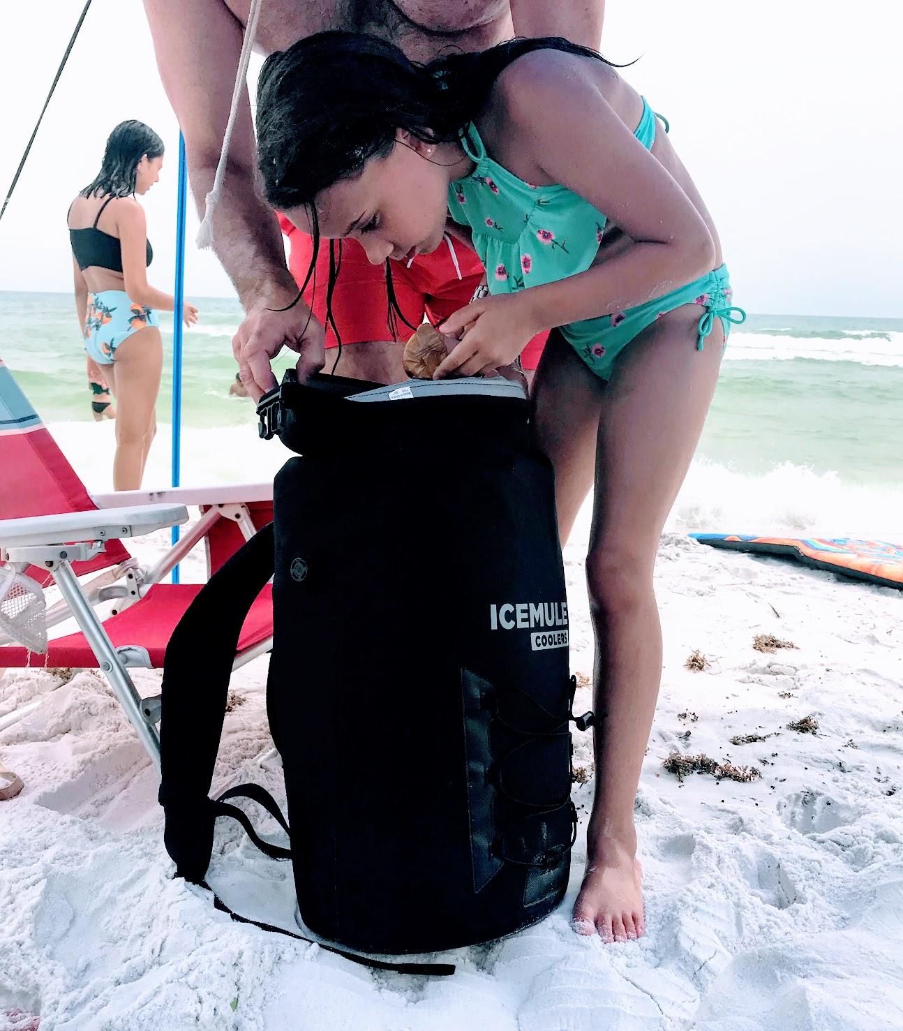 beach backpack cooler