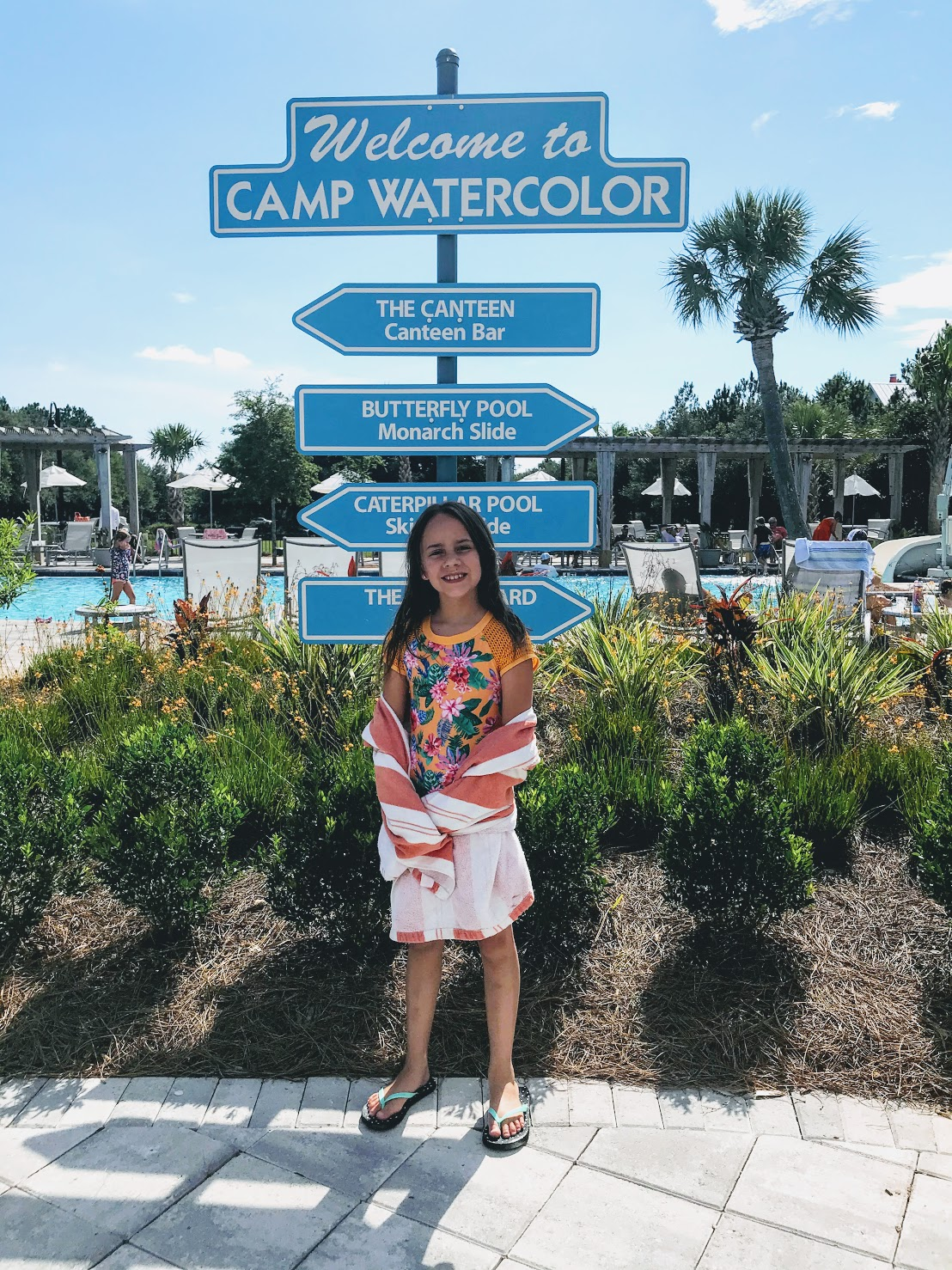 Watercolor Florida things to do